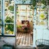 【ベランダ菜園】9月から栽培を始めたいおススメ野菜